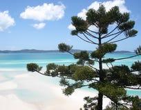 Whitsundays widok Fotografia Stock
