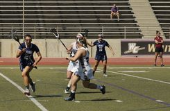 2016 03-14 Whittier kobiet ` s Lacrosse 5 Fairleigh Dickerson 18 Zdjęcie Stock