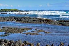 Whittington-Strandpark in der großen Insel von Hawaii Stockfotografie