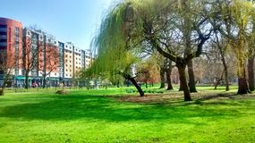 Whitworth park in Manchester. Sun a shining bright stock images