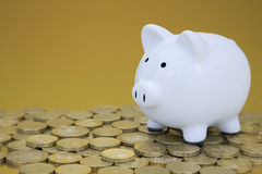 Whity piggy bank on pound coins Stock Photography