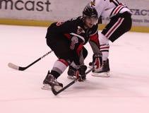 WHL-hockey arkivbild