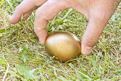 Who is picking up the golden egg? Stock Photography