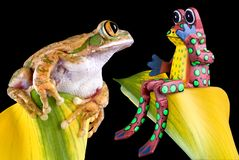 Who is the real frog?. A big-eyed tree frog is looking at a toy frog that seems surprised Stock Image