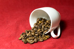 Who spilled the beans? Royalty Free Stock Photography