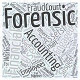 24 Who uses forensic accountants word cloud concept  background Royalty Free Stock Images