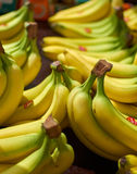 Who wants Bananas. Bananas for sale at the local market Royalty Free Stock Photo