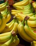 Who wants Bananas. Bananas for sale at the local market royalty free stock photo
