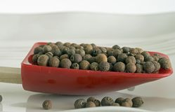 Whole allspice Stock Images
