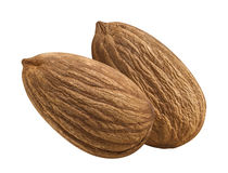 Whole almond nut double  on white background Royalty Free Stock Photo