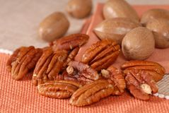 Whole And Shelled Pecans Royalty Free Stock Photos