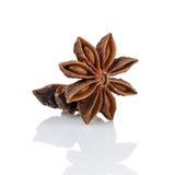 Whole anise stars Stock Images