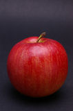 Whole apple on black Royalty Free Stock Images