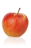 Whole apple Stock Photography