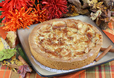 Whole apple kuchen cake in fall setting. Royalty Free Stock Image