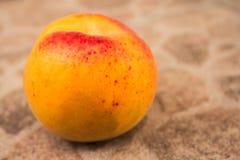 Whole apricot on concrete stock photography