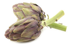 Whole artichokes with a stem Royalty Free Stock Photos
