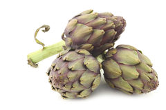 Whole artichokes with a stem Royalty Free Stock Images