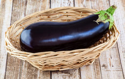Whole aubergine Stock Images