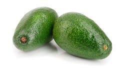 Whole avocado isolated on white background close-up Royalty Free Stock Images
