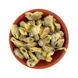 Whole Baby Clams in Dish Royalty Free Stock Images