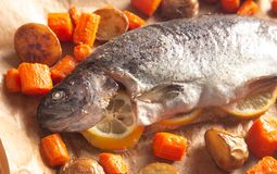 Whole Baked Rainbow Trout with Roasted Root Vegetables. A Whole Baked Rainbow Trout with Roasted Root Vegetables royalty free stock photos