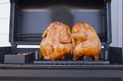 Whole barbequed chickens on grill. Two whole barbequed chickens on the grill  roasted to a golden brown Royalty Free Stock Photo