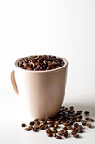 Whole bean coffee in mug isolated on white. With beans scattered around mug royalty free stock image