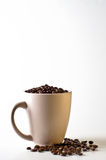 Whole bean coffee in mug isolated on white. With beans scattered around mug stock photos