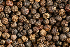 Whole black peppercorns Royalty Free Stock Image