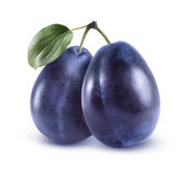 Whole blue plums on white background royalty free stock photography