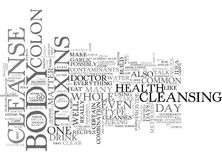 Whole Body Cleanse Word Cloud. WHOLE BODY CLEANSE TEXT WORD CLOUD CONCEPT Stock Photos