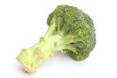 Whole broccoli head  on white Royalty Free Stock Images