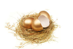 Whole and broken gold eggs Stock Images