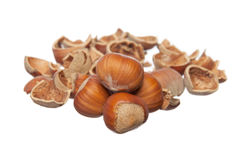 Whole and broken hazelnuts Stock Photography