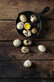 Whole and broken quail eggs Stock Images
