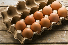 Whole Brown Eggs in Cartoon Box Stock Photography