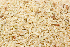 Whole brown rices Royalty Free Stock Photo