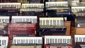 Accordions at the music store. royalty free stock photography