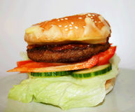 Whole Burger Stock Photography