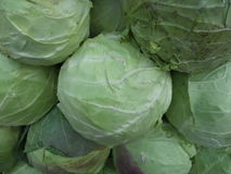 Whole cabbages Stock Photo