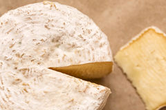 Whole caciotta mature  cheese with slice ove rpaper Royalty Free Stock Photo