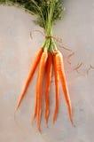 Whole Carrots Royalty Free Stock Photo