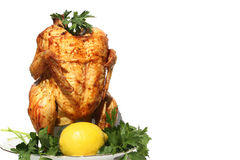 Whole Chicken Royalty Free Stock Photos