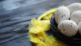 Whole Chicken eggs in a nest on a black rustic wooden background. Easter symbols. Whole Chicken eggs in a nest on a black rustic wooden background with yellow stock footage
