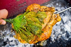 Whole chicken on the grill Stock Photography