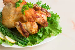 A whole chicken grilled with fresh vegetables and herbs. Grilled chicken on a white plate with fresh herbs and lemon Stock Images