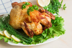A whole chicken grilled to a golden crust with fresh vegetables. Grilled chicken on a white plate with fresh herbs and lemon Stock Photos