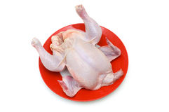 Whole chicken isolated. On the white background Stock Images