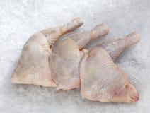 Whole chicken leg Royalty Free Stock Photo